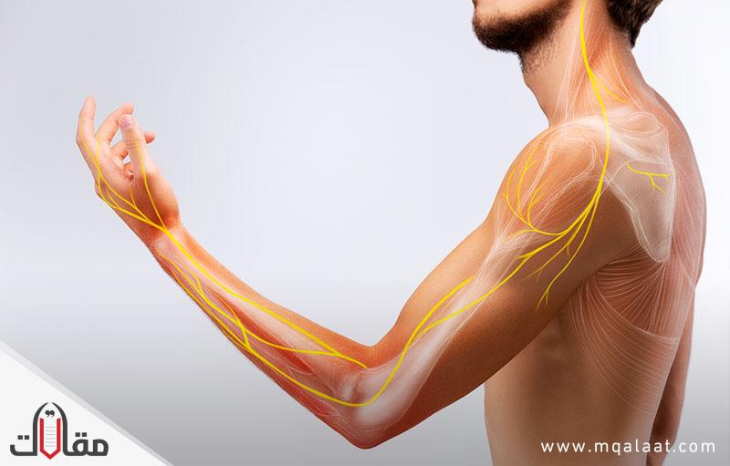 امراض الجهاز العصبي