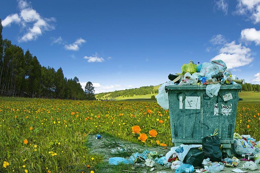 تلوث البيئة بالنفايات وطرق معالجتها