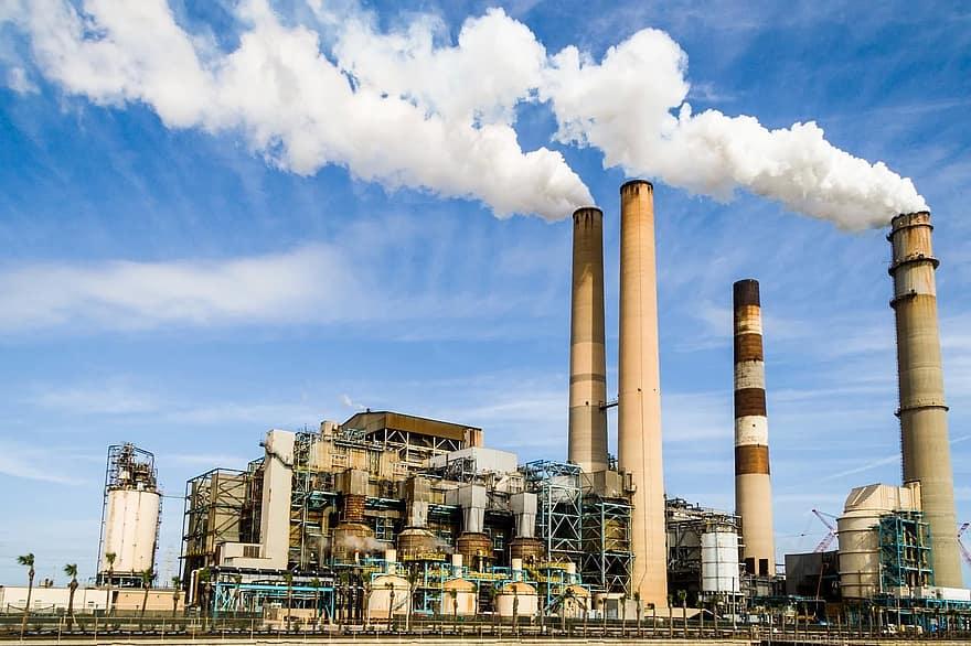 اضرار تلوث البيئة