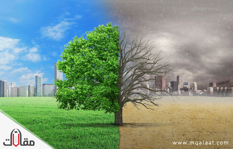 مشاكل البيئة