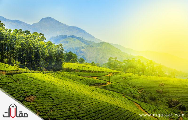 السياحة في الهند كيرلا