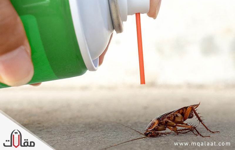 طريقة التخلص من الصراصير