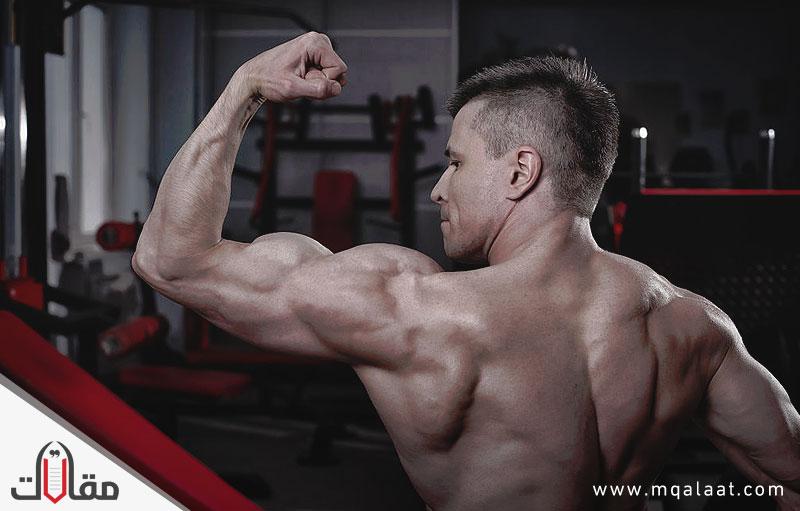 أهم الأغذية لبناء العضلات