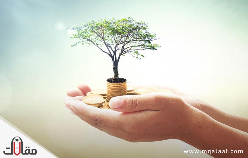 ما هي صناديق الاستثمار