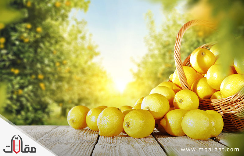 فوائد الليمون واضراره
