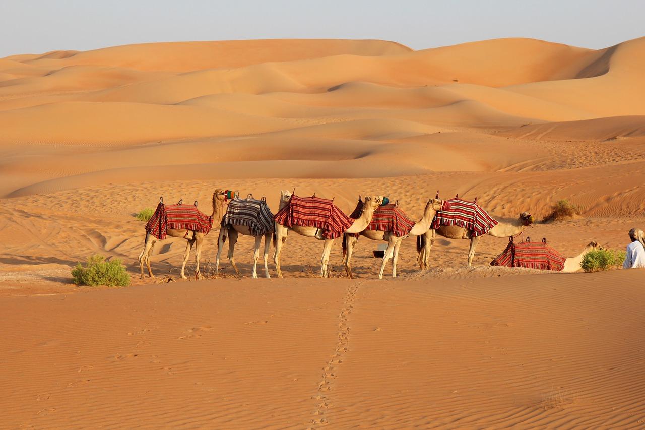 صحراء الربع الخالي بالسعودية