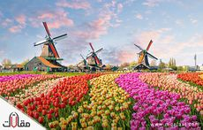 امستردام اين تقع