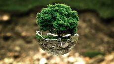 بحث عن الكيمياء البيئية