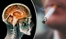 اثار التدخين على الدماغ