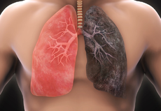 اثار التدخين على الرئتين