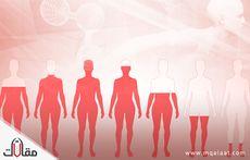 أنواع الهرمونات