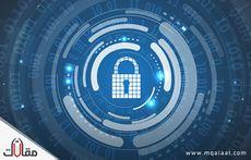 امن المعلومات وحمايتها