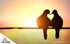 تعريف الحب