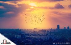 اهم مدن مصر